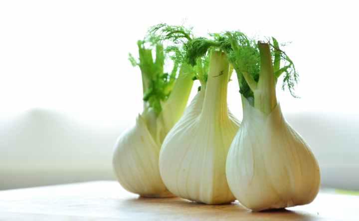 fennel-vegetables-fennel-bulb-food-159471.jpeg